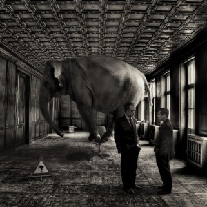 Elephant in the Room courtesy of Fuel Your Blogging
